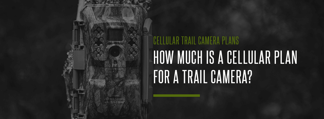 how much does a cellular trail camera cost